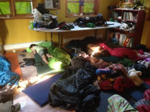 Soveværelset. Bævere er så søde, når de sover!
